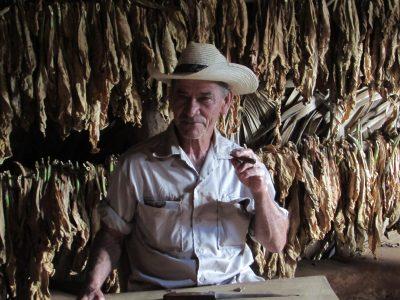 Guajiro cigar